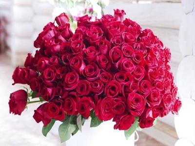 wyrkwiaty-na-dzien-matki-roze_302047